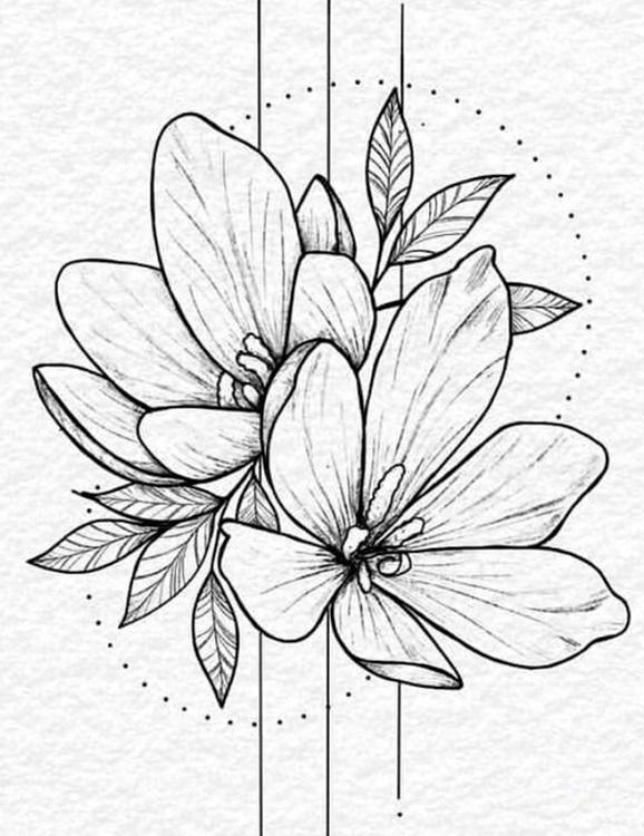 Рисунки цветов для срисовки цветные (22)