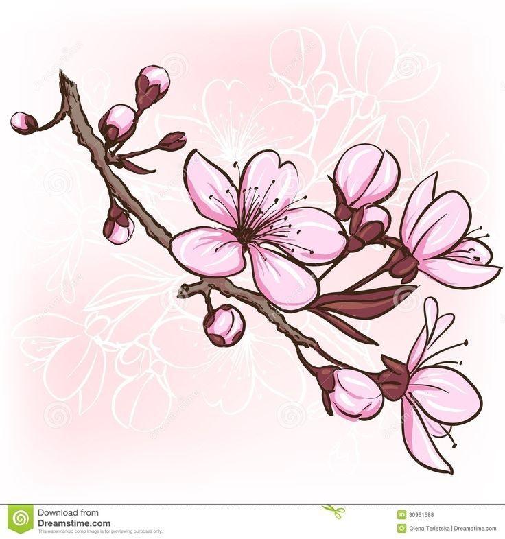 Рисунки цветов для срисовки цветные (24)