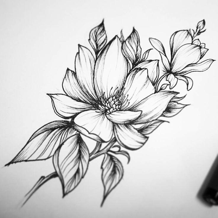 Рисунки цветов для срисовки цветные (25)