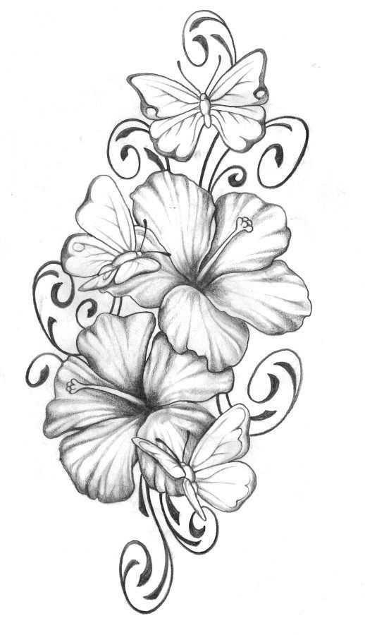 Рисунки цветов для срисовки цветные (3)
