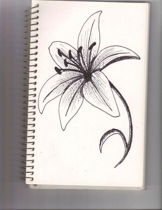 Рисунки цветов для срисовки цветные (4)