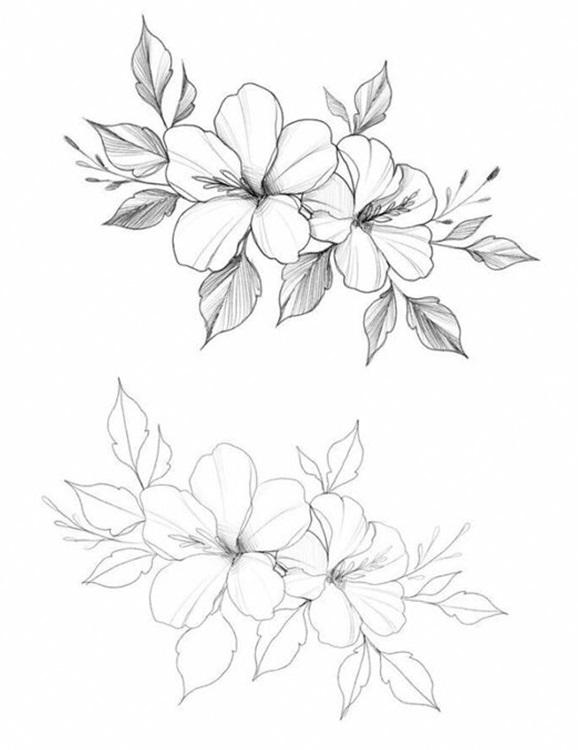 Рисунки цветов для срисовки цветные (8)
