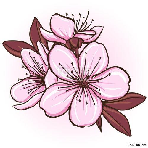 Рисунки цветов для срисовки цветные (9)
