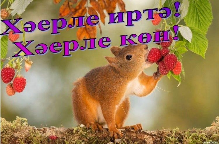 С добрым утром открытки на татарском (12)