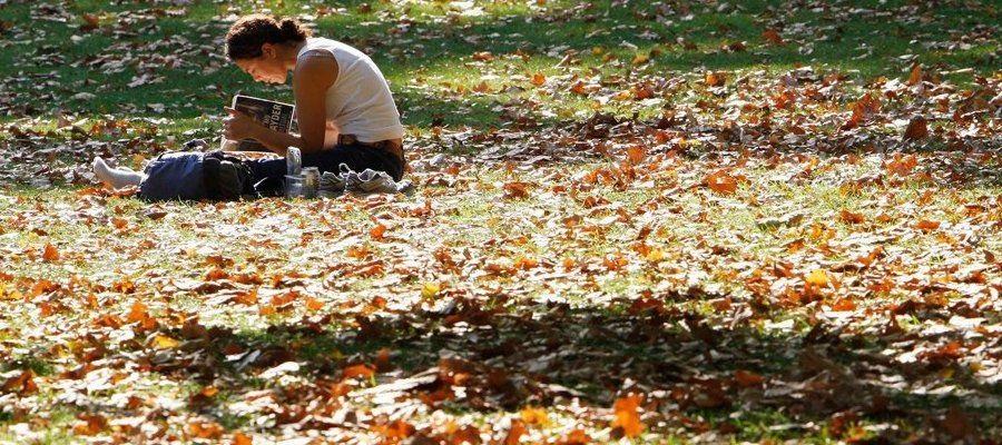 Фото в лесу осенью идеи (2)