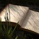 Что такое природа в литературе?