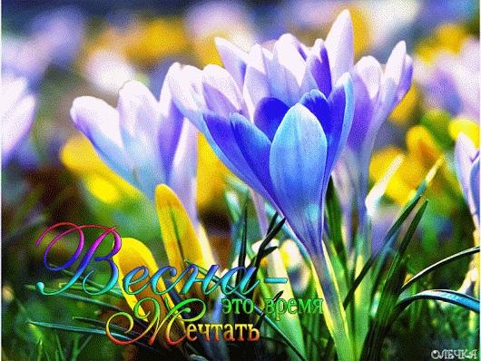 Весна Красивые фотографии (22)