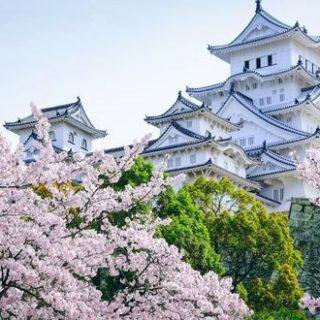 Весна Красивые фотографии (4)