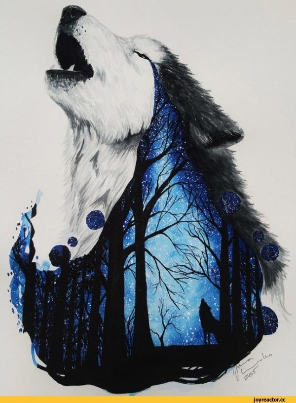 Волк красивые картинки (1)