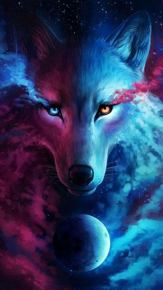 Волк красивые картинки (23)