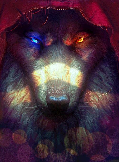 Волк красивые картинки (24)