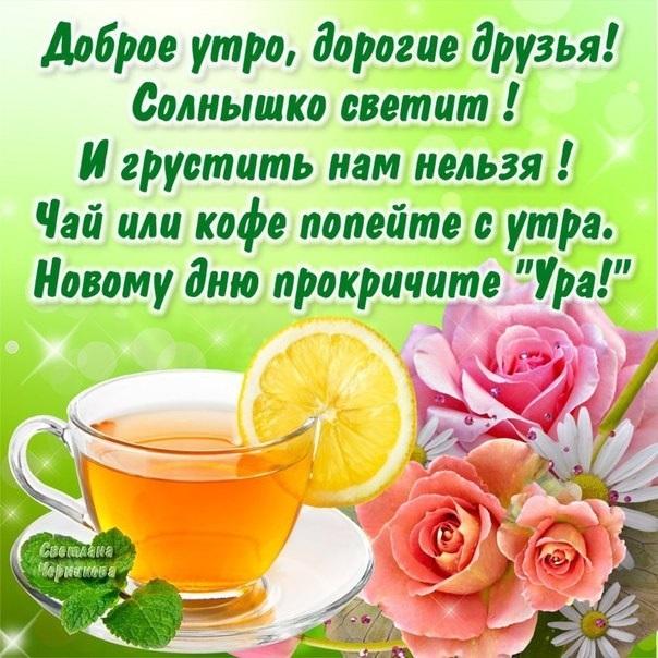 Доброе утро мои хорошие (8)