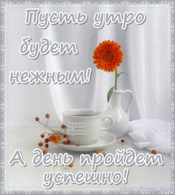 Дочь доброе утро картинка (1)