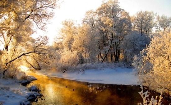 Зимняя природа (10)