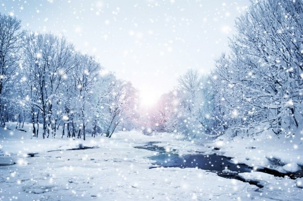Зимняя природа (11)
