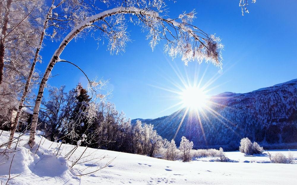 Зимняя природа (13)