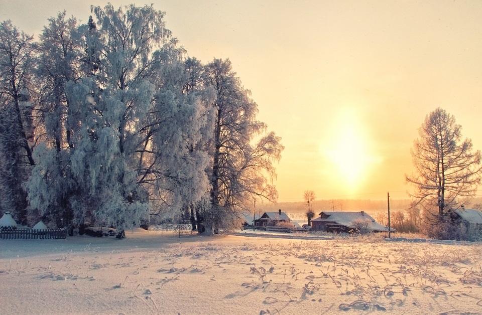 Зимняя природа (15)
