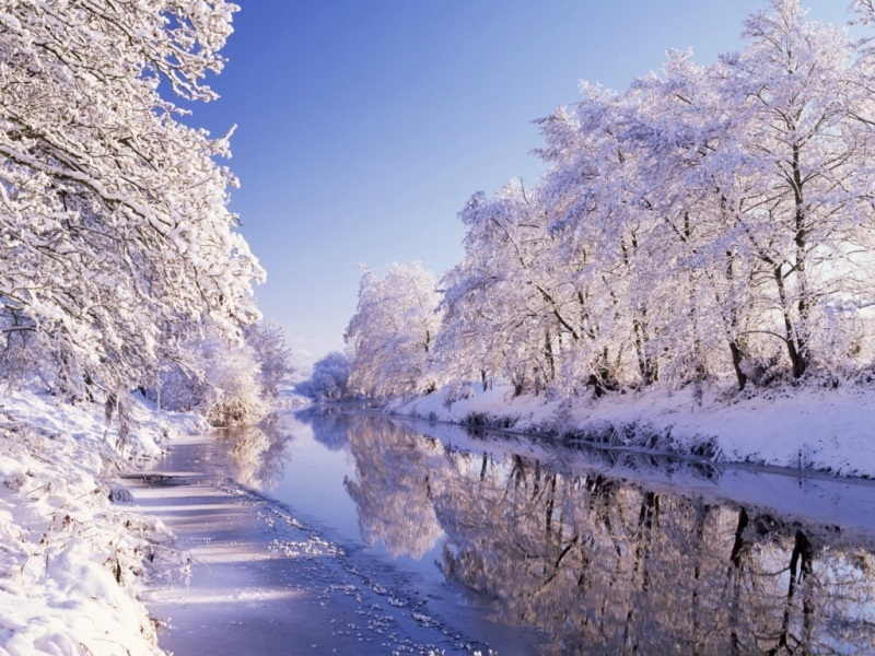 Зимняя природа (17)