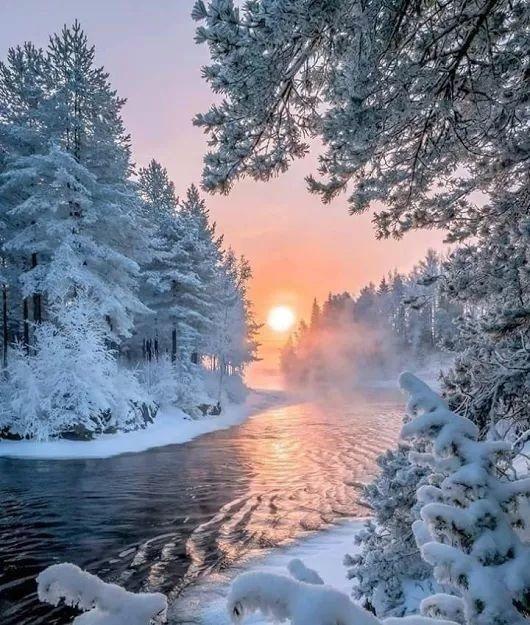 Зимняя природа (4)