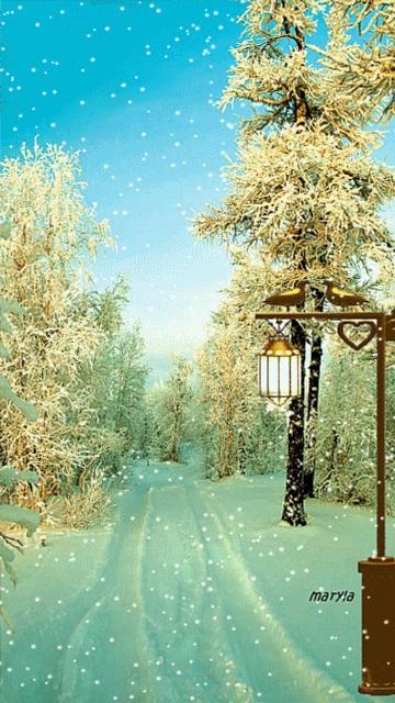 Зимняя природа (5)