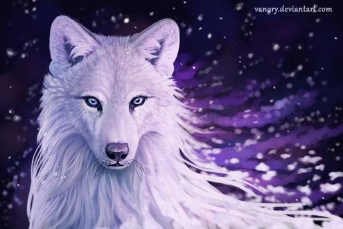 Картинки волк на аву (10)