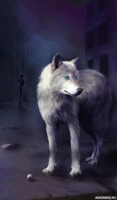 Картинки волк на аву (12)