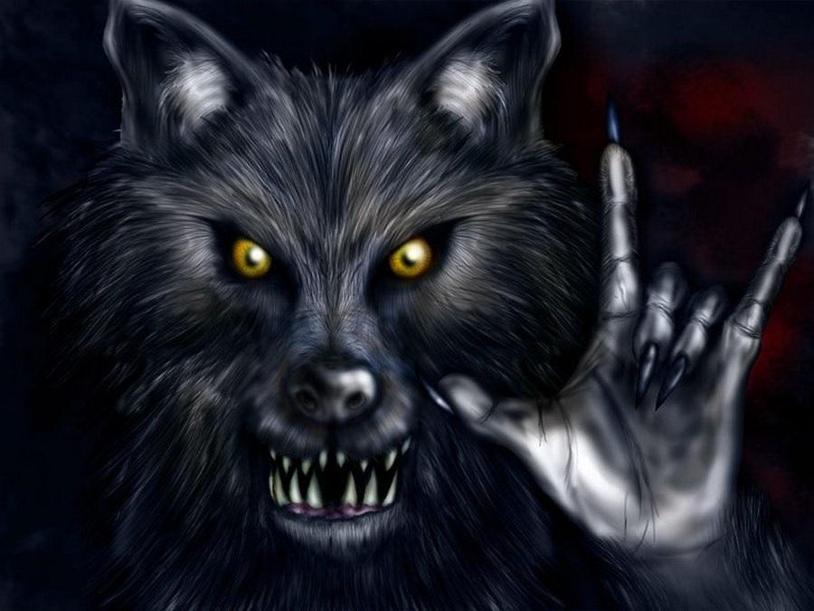 Картинки волк на аву (17)