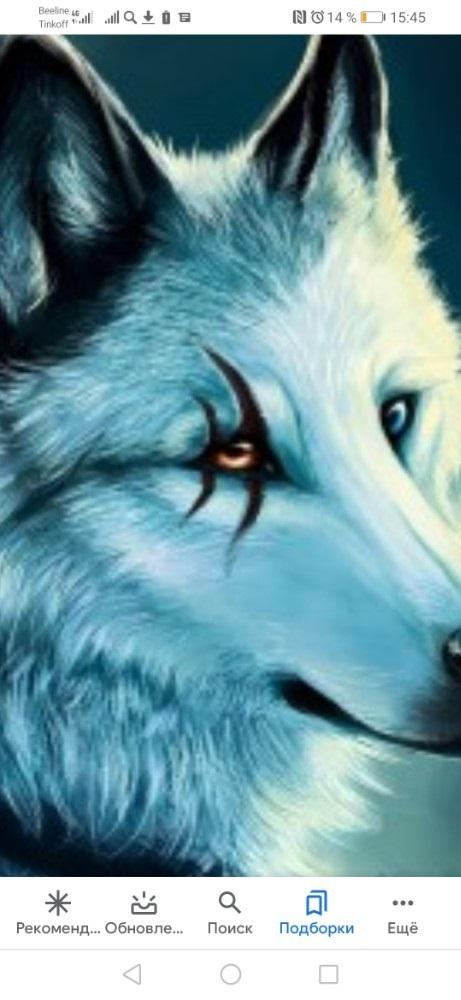 Картинки волк на аву (23)