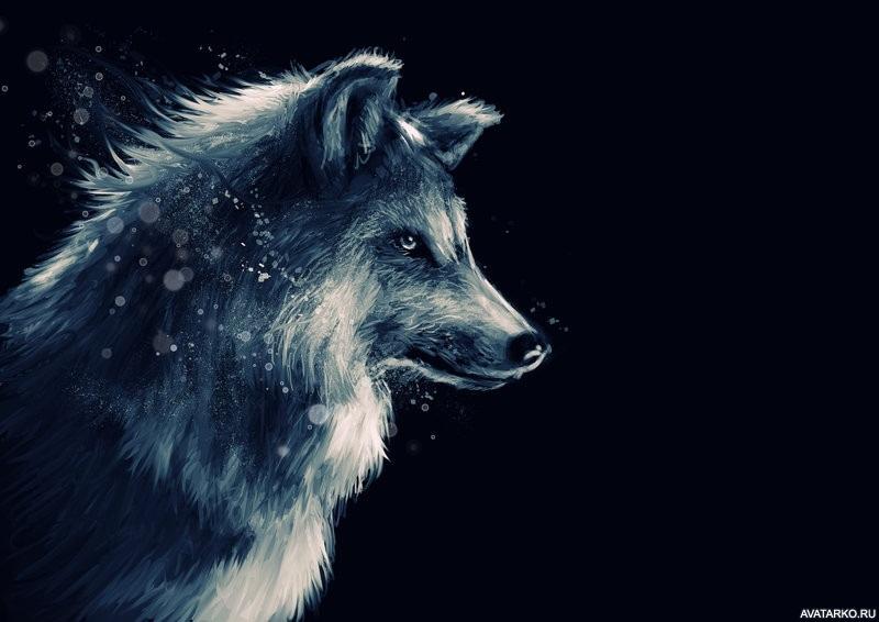 Картинки волк на аву (3)