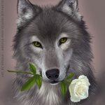 Картинки волк на аву