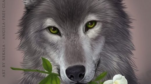 Картинки волк на аву (4)