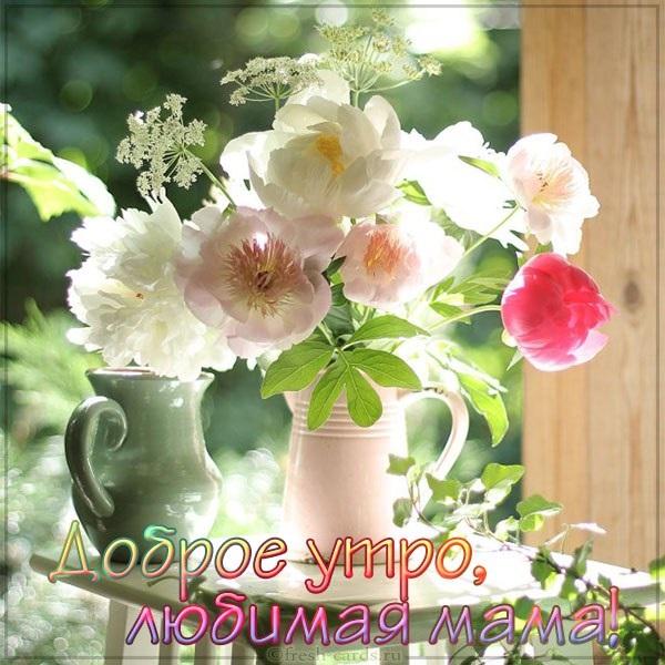 Картинки доброе утро мама (1)