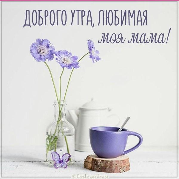 Картинки доброе утро мама (15)