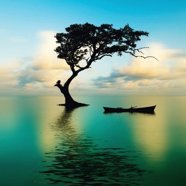 Красивая природа (2)