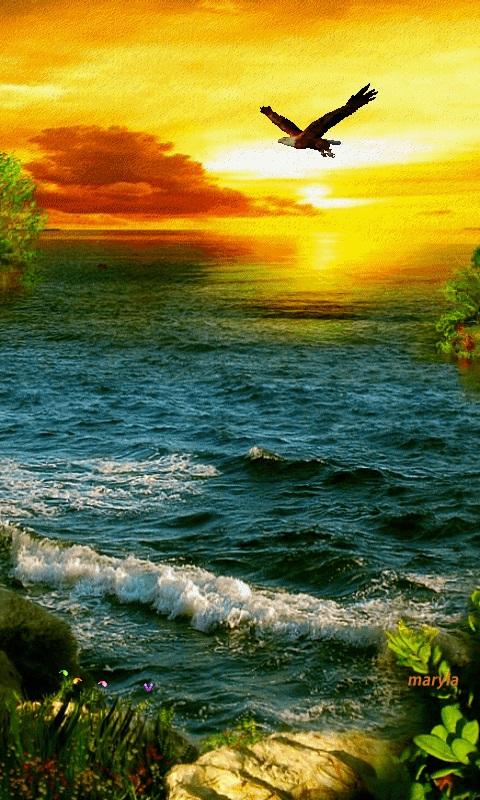 Красивая природа (7)