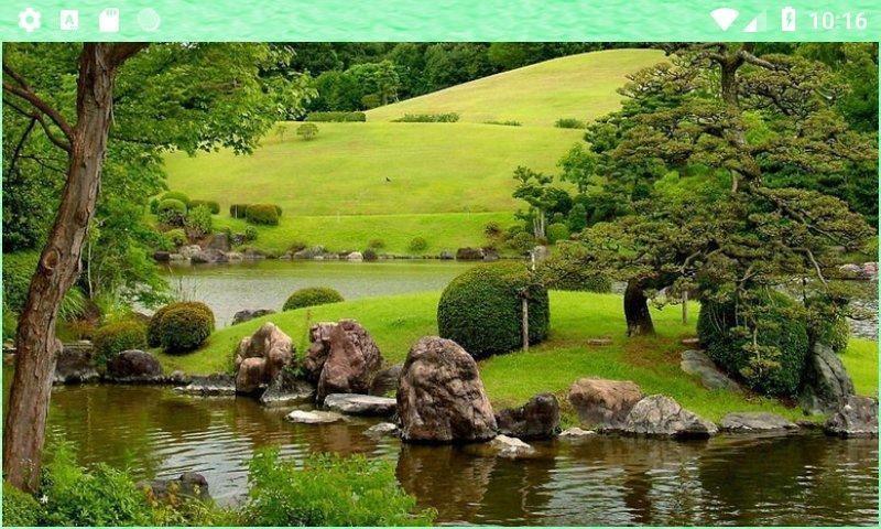 Красивая природа (8)