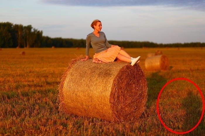 Красивая фотосессия на сене в поле (13)