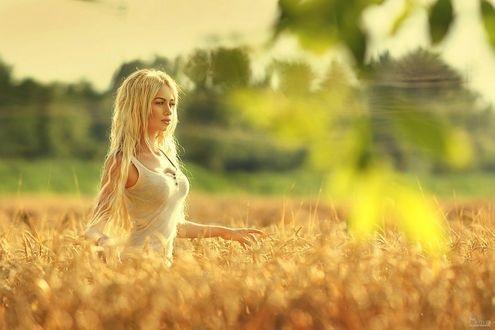 Красивая фотосессия на сене в поле (17)