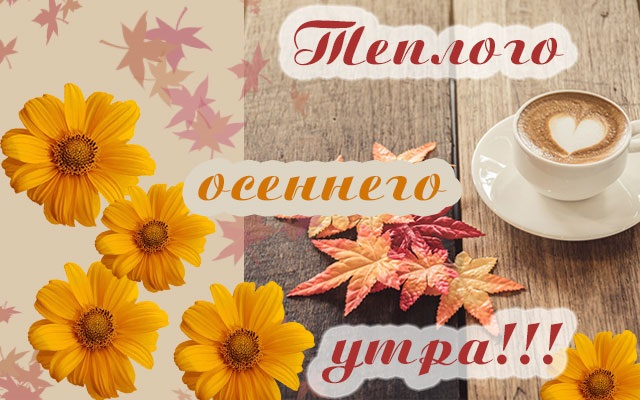 Красивые картинки с добрым утром осень (14)