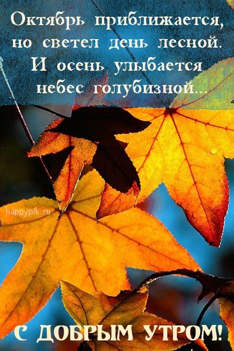 Красивые картинки с добрым утром осень (3)