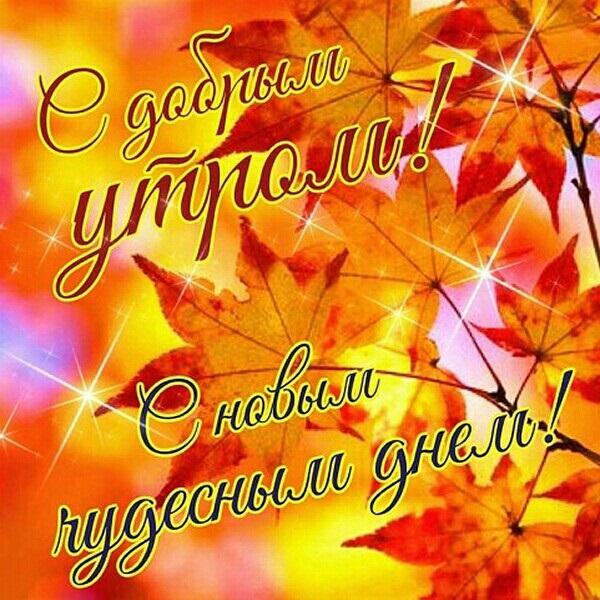 Красивые картинки с добрым утром осень (4)