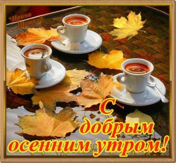 Красивые картинки с добрым утром осень (9)