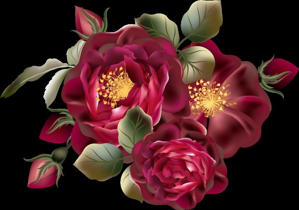 Красивые картинки цветы силуэт (10)