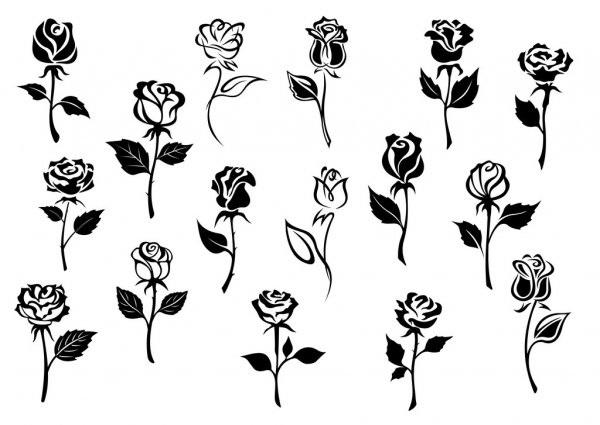 Красивые картинки цветы силуэт (19)