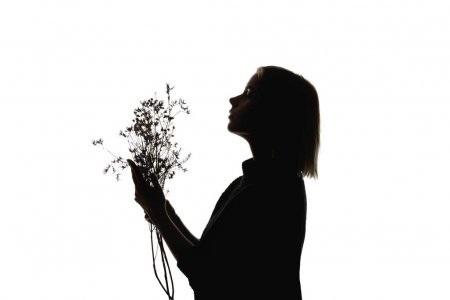 Красивые картинки цветы силуэт (8)