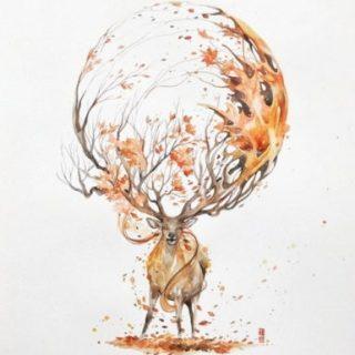 Красивые рисунки для срисовки олень (12)