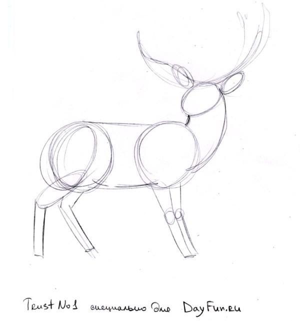 Красивые рисунки для срисовки олень (13)
