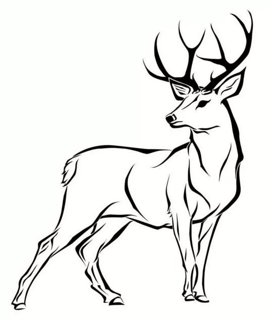 Рисунки оленей для срисовки легкие и красивые