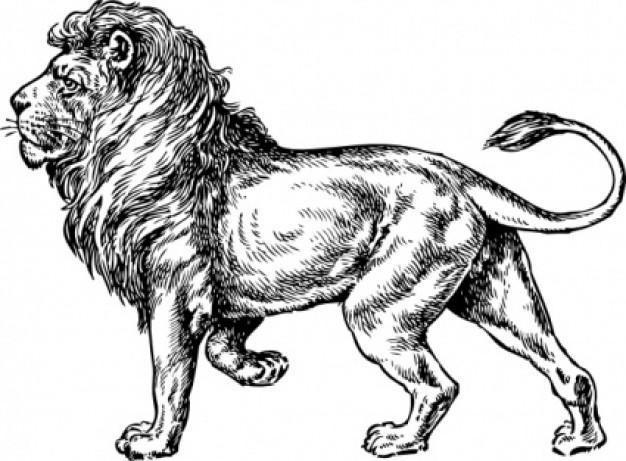 Красивый рисунок карандашом Хроники Нарнии (18)
