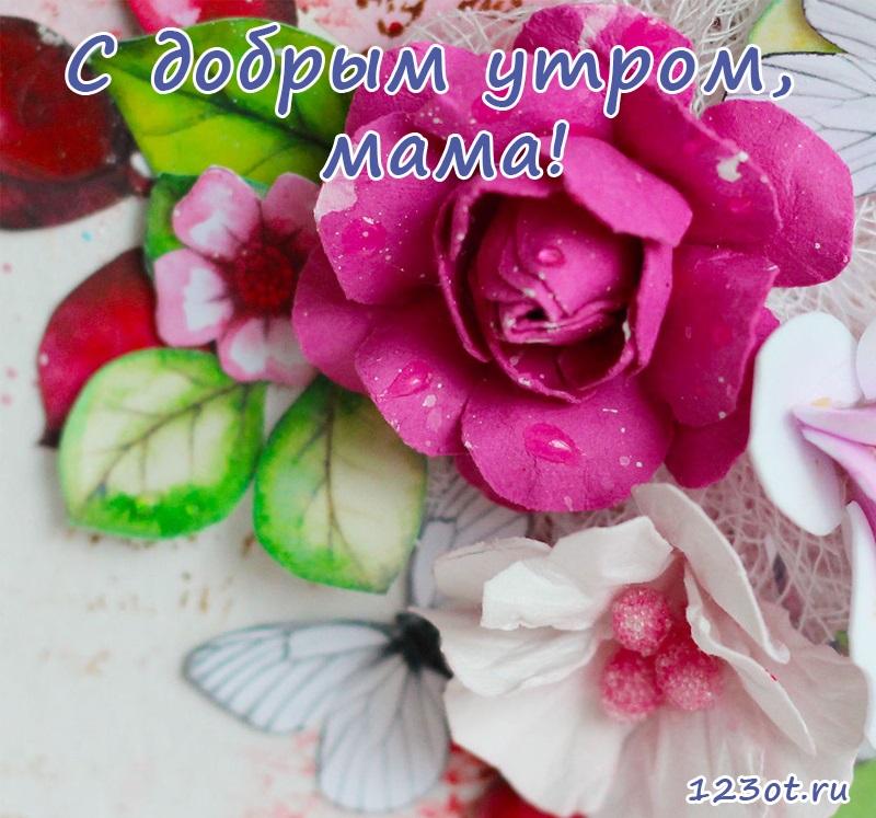 Мамочка с добрым утром открытки (25)